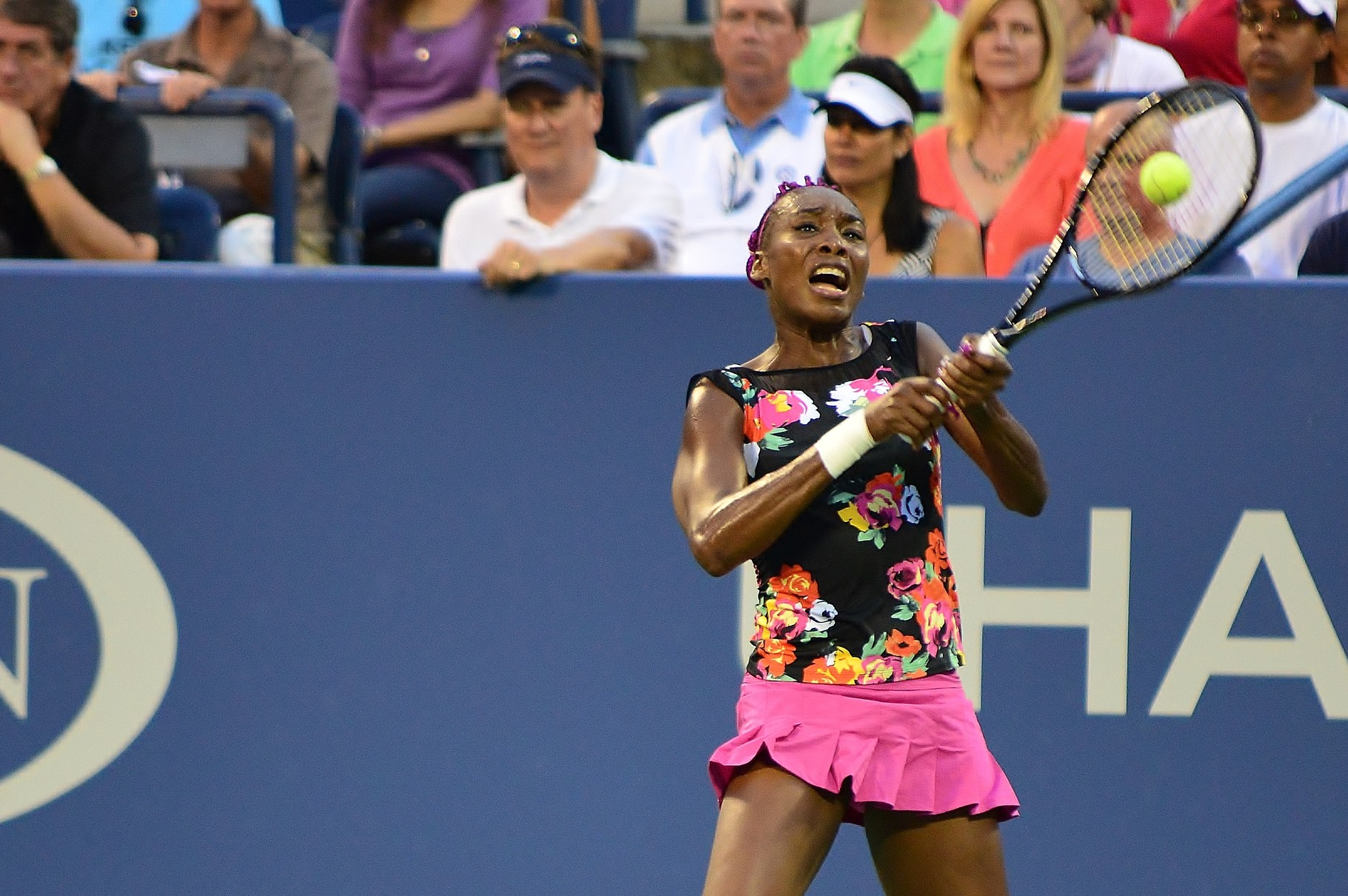 ... der wiedererstarkten Venus Williams zu tun. (Foto by: Edwin Martinez from The Bronx  [CC BY 2.0] über Wikimedia Commons)