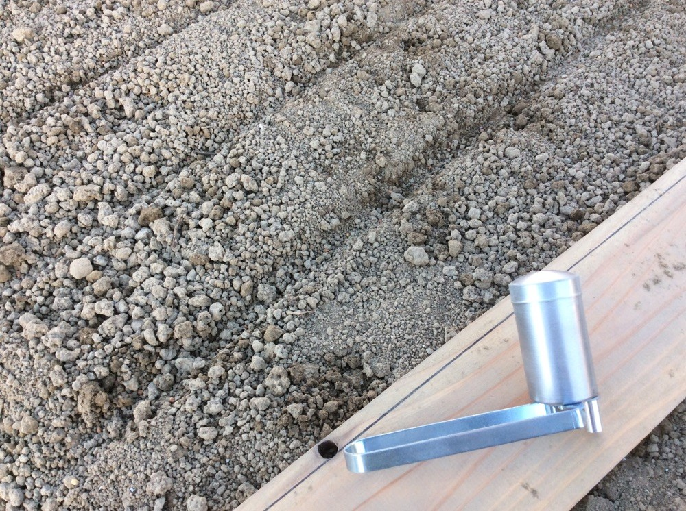 溝を掘ってそこに数センチ間隔で播きます