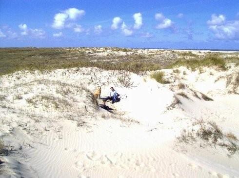 Dünen auf der Insel Borkum