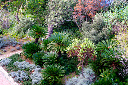 Jardín Botánico Histórico de Barcelona