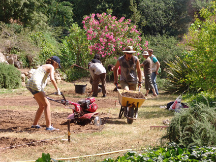 1 º Camp de treball. Creació de zona etnobotànica. (Juliol 2010)