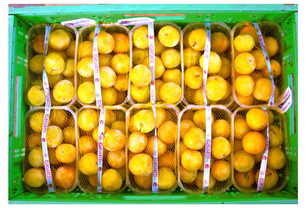 Susine gialle cestino
