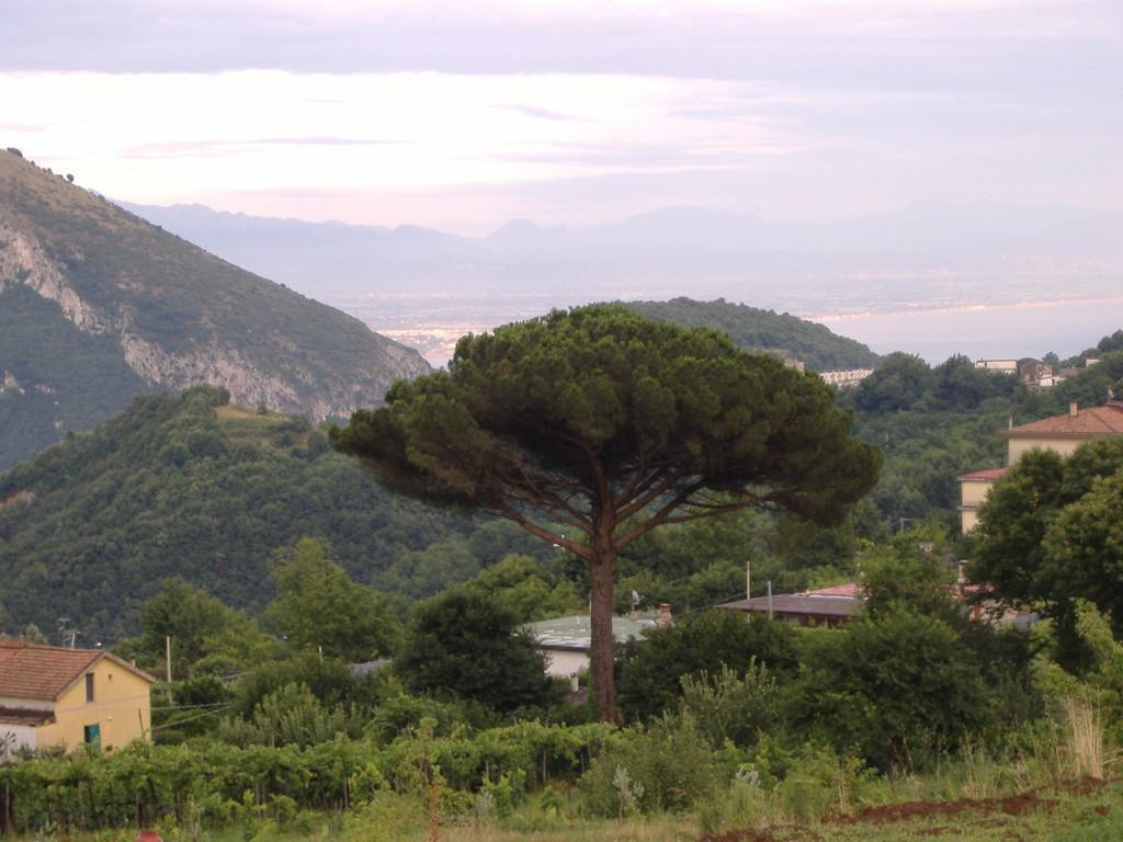Veduta di Salerno da Cava