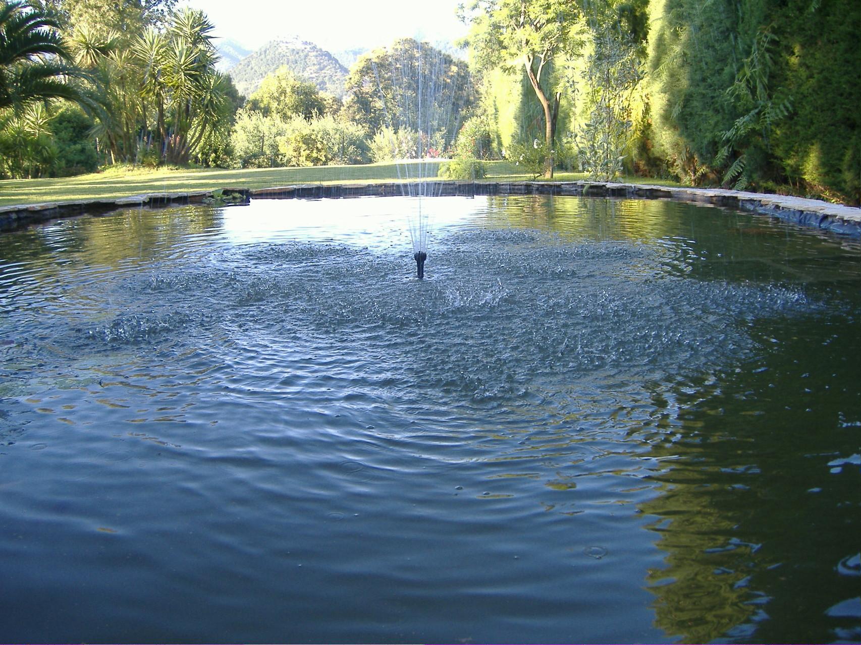 Il laghetto della villa