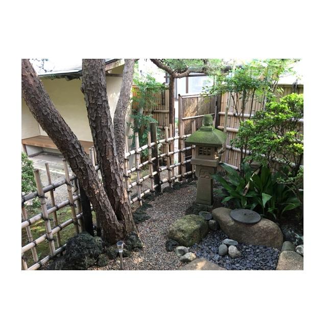 茶室の庭(露地)