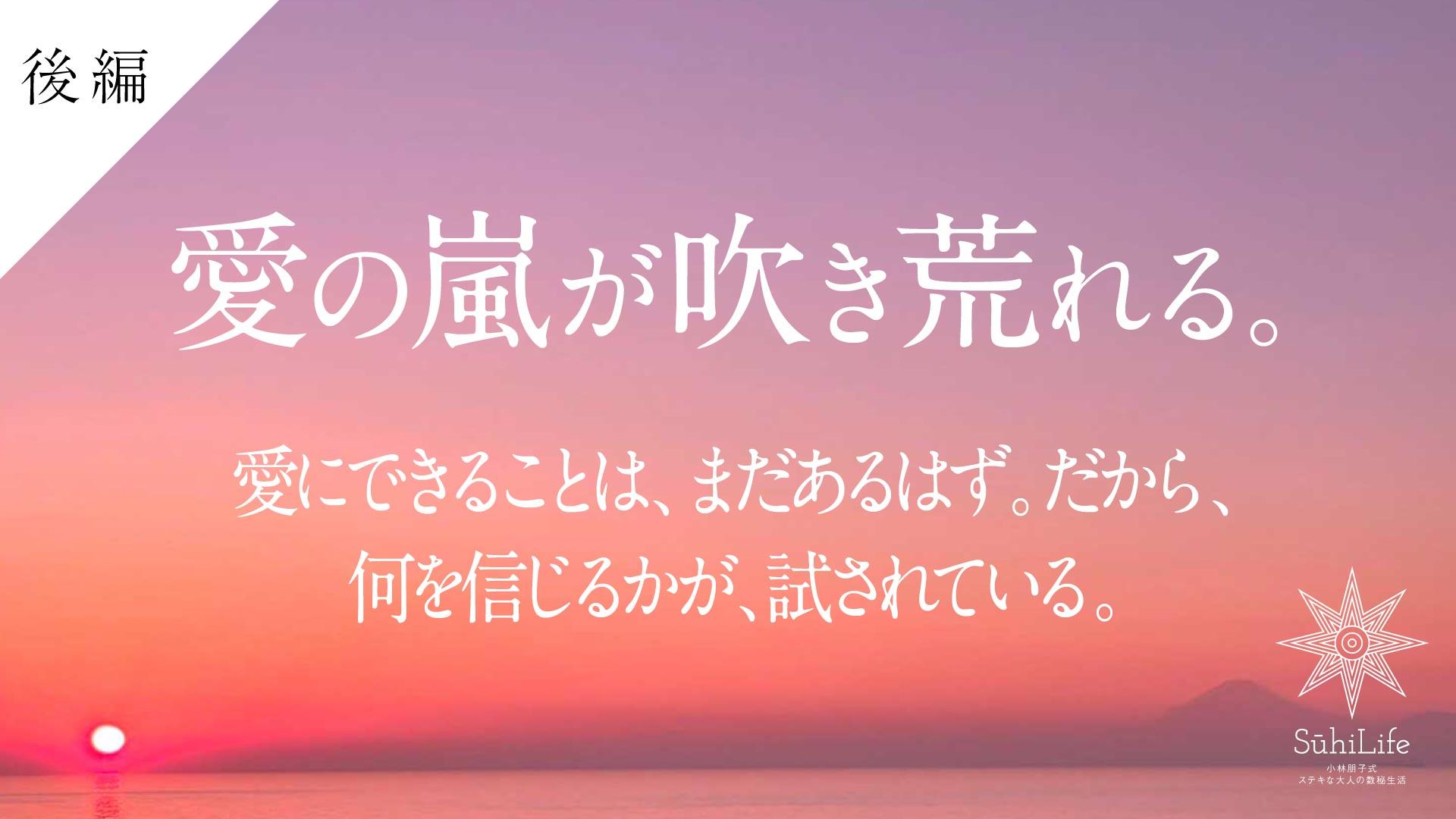 愛の嵐が吹き荒れる【後編】