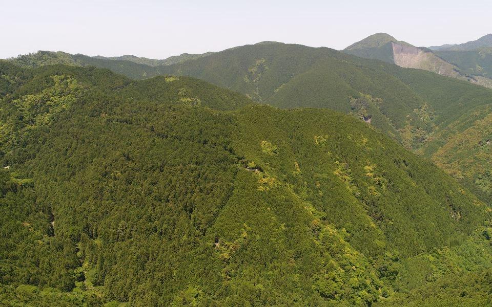 和歌山研究林 遠景