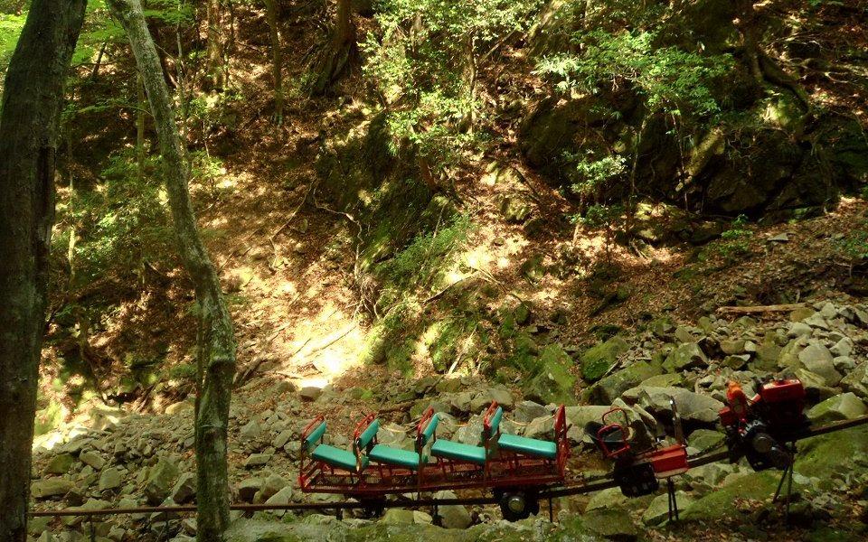 林内の要所に伸びる小型モノレール