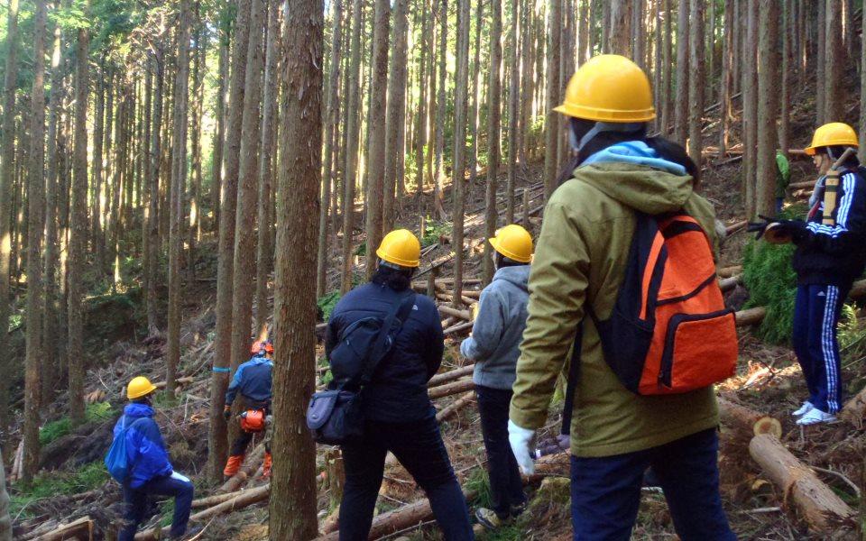 大学生向けの選木・間伐実習の様子