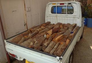 広葉樹の薪材サンプル(約1立米ぶん)