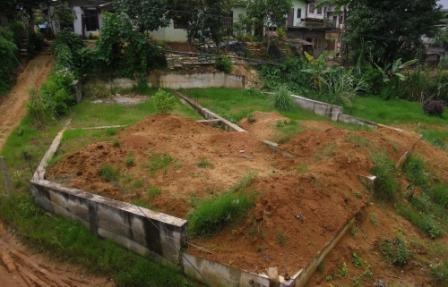 Erschrecken im Sommer 2012: Das überwachsene Grundstück