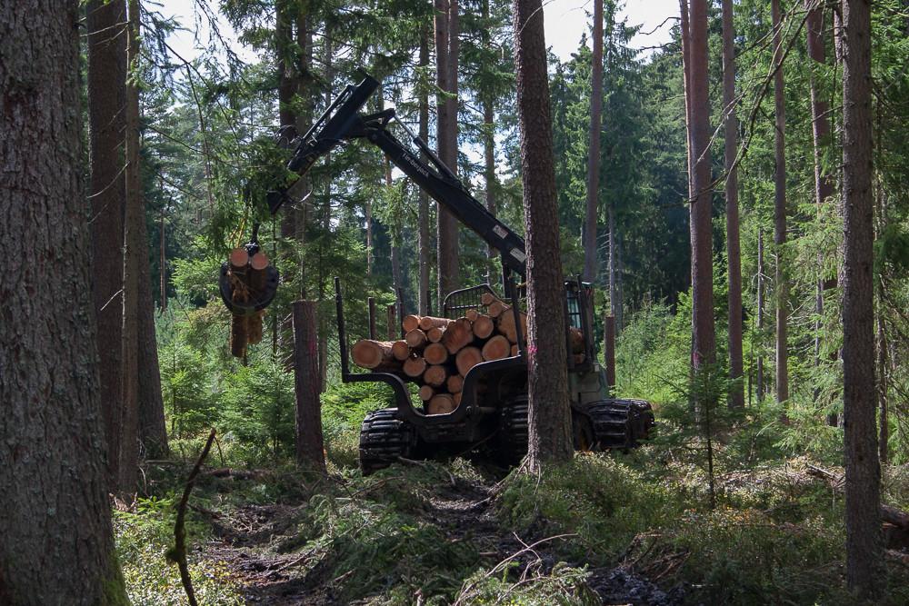 Abtransport des Holzes mit 8-Rad-Rückezug mit Moorbändern