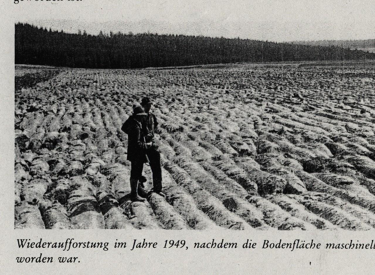 Flugplatzgelände 1949 nach Vollumbruch
