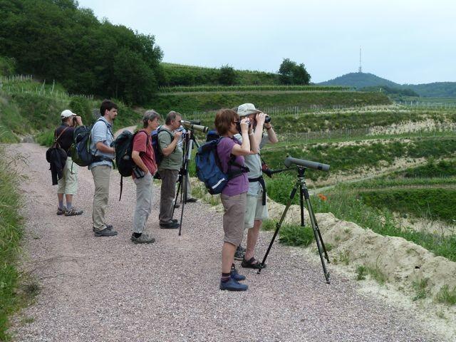unsere Exkursions-Gruppe auf der Suche nach...