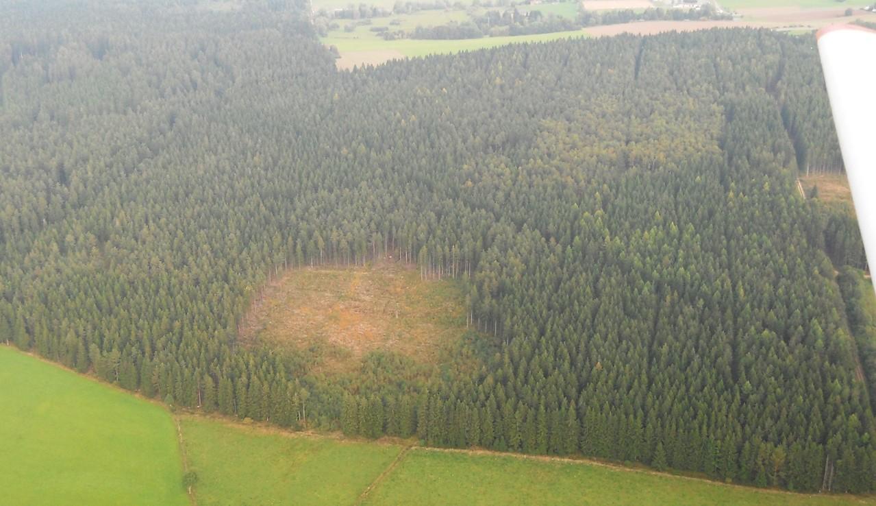 kleine Sturmfläche, dahinter NABU-Fläche, im Hintergrund Gifitzenmoos, Luftbild, Fotograf: Jörg Maier (C)
