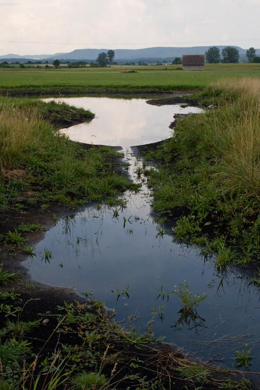 unser neuer NABU-Teich nach dem Stauwehr-Bau