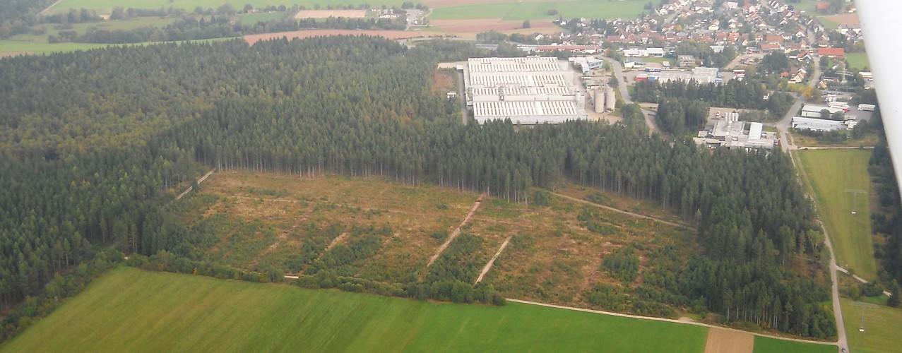 Sturmfläche Ehle mit Eichenaufforstung, Luftbild, Fotograf: Jörg Maier (C)
