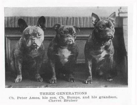 3 Generationen, von links nach rechts : Opa, Papa, Sohn