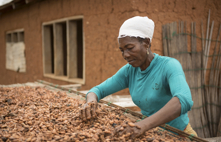 Cacao uit Ghana
