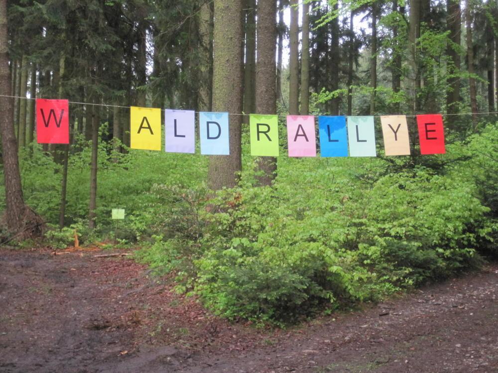 Waldrallye der Klasse 3