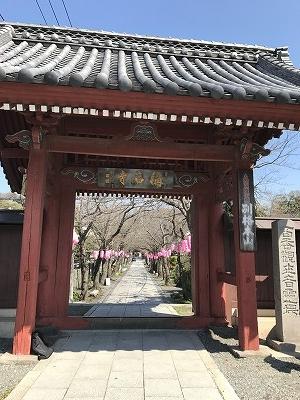 称名寺の入口 北条実時により創建されたそうです。