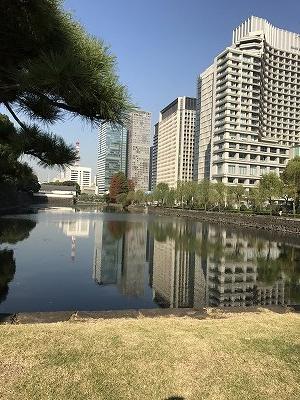 皇居外苑から眺める ビル群・・・・そんなに高いビルはありません。