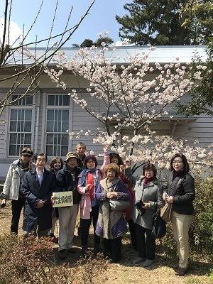 一本だけ桜が咲いてました!!嬉しい~!(^^)!