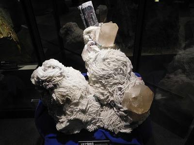 ブラジル隕石で、リチア電気石だそうです(^^♪ 吸いつきそう~ですね。