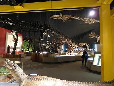 恐竜好きな子供たちが見たら、大喜びするだろうな~と、見上げてました(笑)