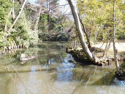 庭園内には小さな小川が流れていて風情があります。