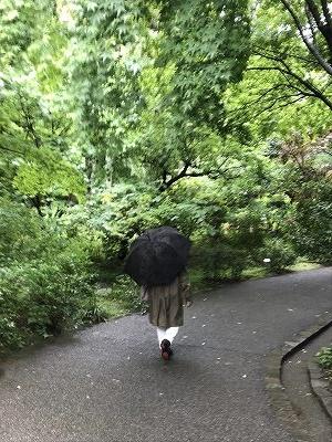 雨が降ったおかげで、みずみずしい樹木と若葉、鮮やかな緑に大変心が癒されました。
