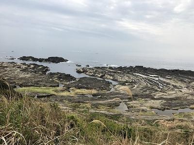 城ヶ島の散策コースは海を見下ろしながら歩きます。景色も最高!(^^)!