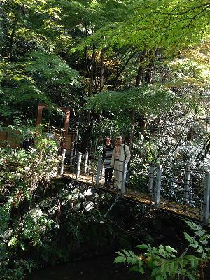 ここの「親水緑道」は帷子川改修時に整備された水と緑を生かした素敵な公園でした(^^♪ もう一度来てみたいと思いました!
