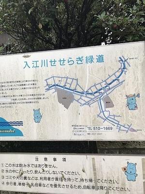 住宅街に沿って流れている入江川・・・・素敵な緑道が4km続いているそうです。