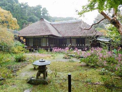浄智寺の庭園
