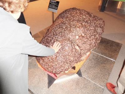 「地球を考える」のコーナー。ここには、世界の隕石を観ることができます。この隕石は1911年にオーストラリアのマンドラビラ隕石で、2.5トンあるそうです(^^♪
