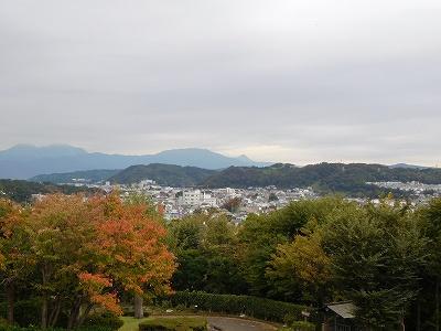 展望台からの眺めです。お天気が曇りでしたので、あいにく富士山は雲に隠れていました((+_+)) でも晴天の時の眺めは最高だ!!と、確信できるほど、素敵な眺めでした(^^♪