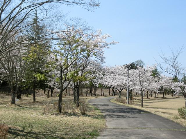 下郷町・ふるさと公園