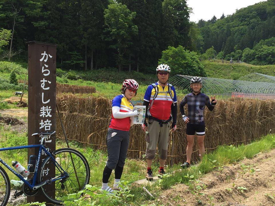 からむし織りの里・昭和村のからむし畑を探したり、、、 (からむしとはイラクサ科の多年生植物。別名「苧麻(ちょま)」とも呼ばれる。昭和村では、越後上布や小千谷縮みの原料産地として古くから作られています。)
