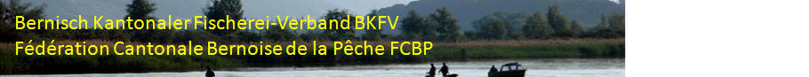 www.bkfv-fcbp.ch