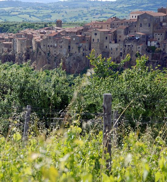 Blick von Sassotondo-Weinberg auf Pitigliano