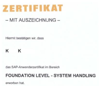 SAP Foundation Level - System Handling, K.D. Michaelis