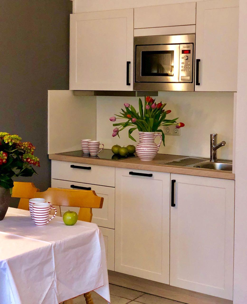 Neue Küche mit Spülmaschine und Mikrowelle.