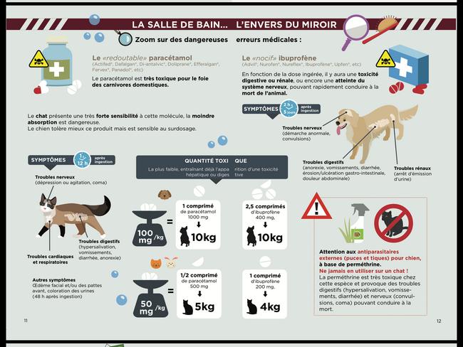 Une affiche des dangers de la salle de bain par coach canin 16 éducateur canin en charente