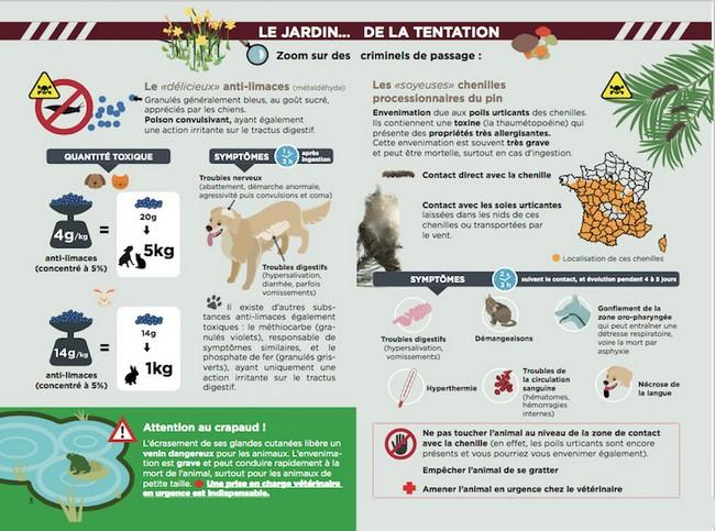 Affiche schématisant les dangers du jardin pour le chien par coach canin 16 éducaeur canin en charente