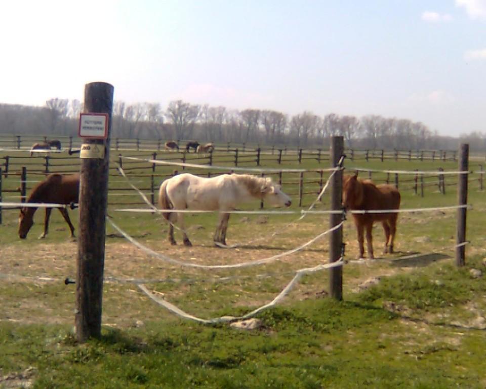 April 2009 eeeeeendlich warm & trocken! :-)
