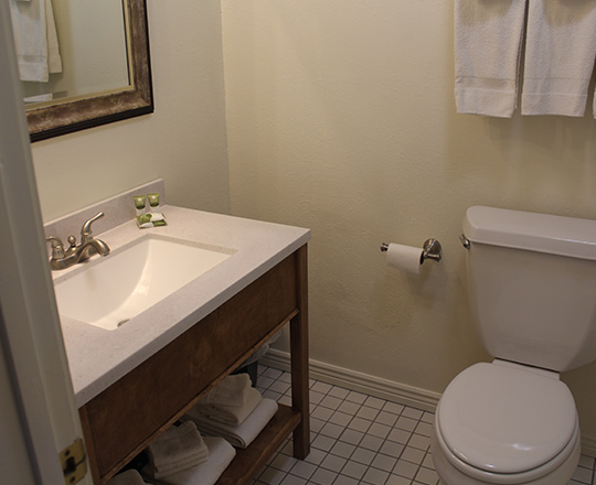 HOUSE SUITE - BATHROOM