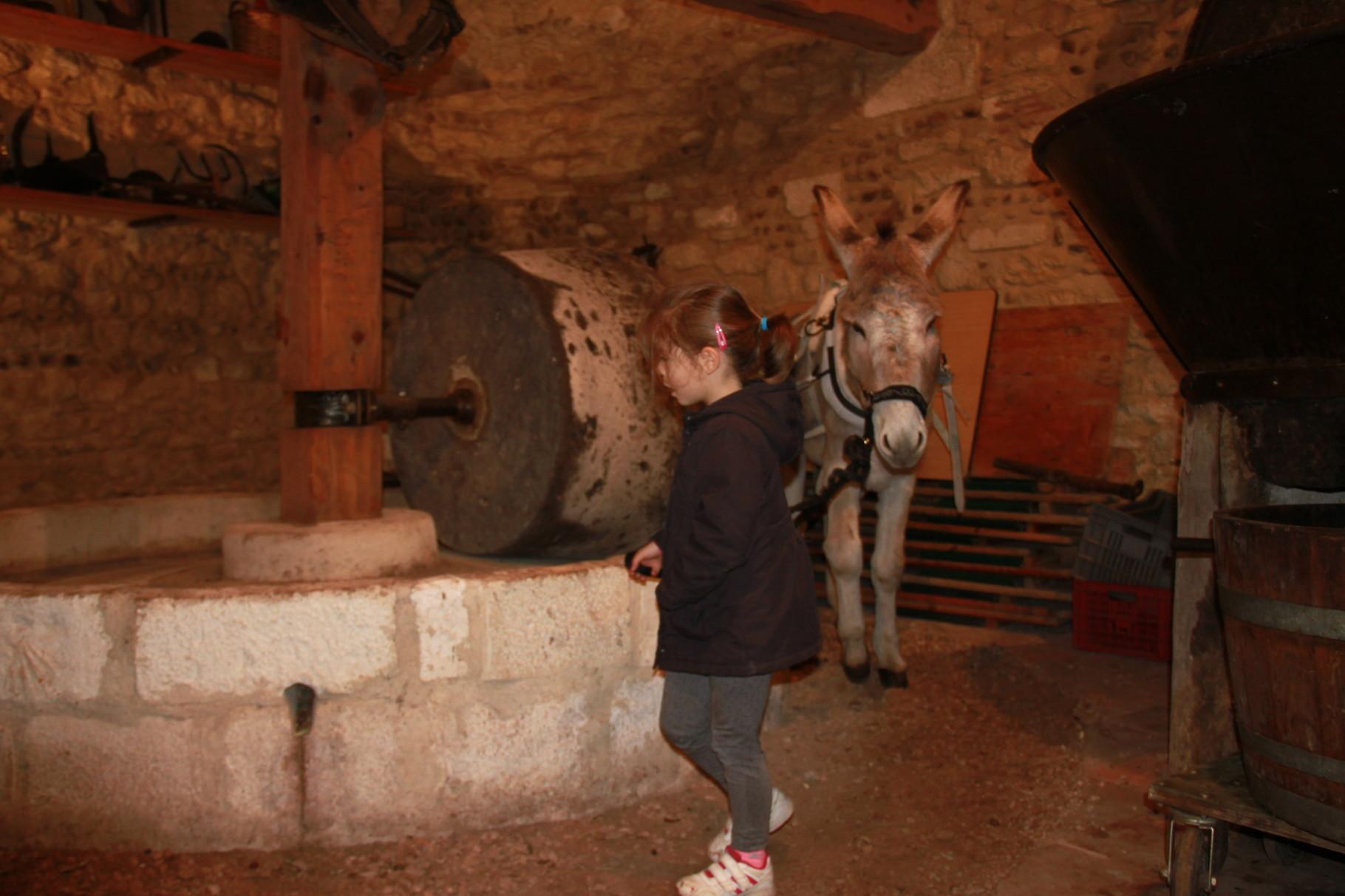 Il était une fois une petite fille et un âne dans un moulin à huile...