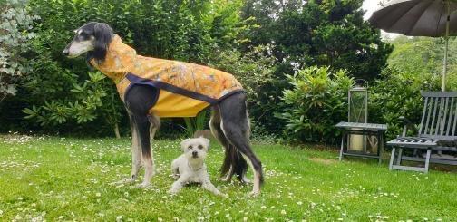 TooSi mit ihrem neuen RegenZipShirt WILDE WIESE