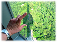 Picture of N Seoul Tower - Bild vom N Seoul Tower